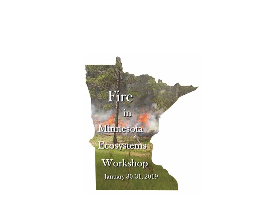 Save-the-Date for the Fire in MN Ecosystems Workshop