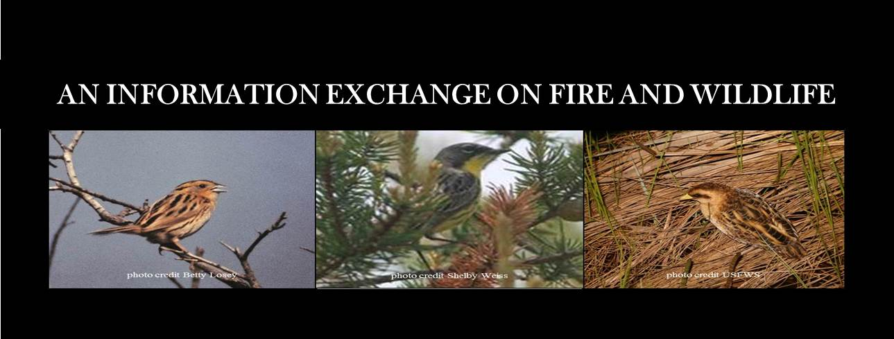 NEW Fire and Wildlife Wepage