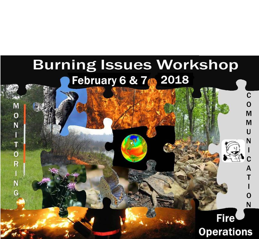 4th Annual Burning Issues Workshop
