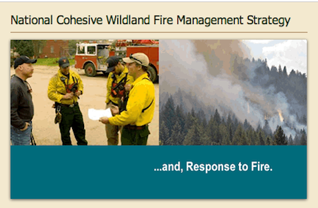 The Wildland Fire Executive Committee announced the release of Regional Action Plans for wildland fire management. Read about it here.